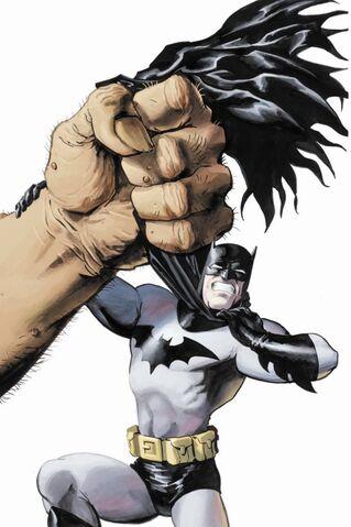 File:Batman 0415.jpg