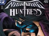 Nightwing/Huntress Vol 1 3