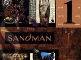 Sandman Vol 2 41
