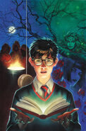 Books of Magic Vol 3 1 Textless Variant