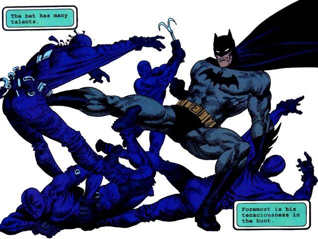 File:Batman 0351.jpg