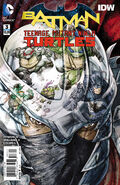 Batman Teenage Mutant Ninja Turtles Vol 1 3