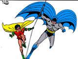 Batman Chronicles Vol 4 (Collected)