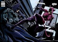 Batman and Catwoman clash