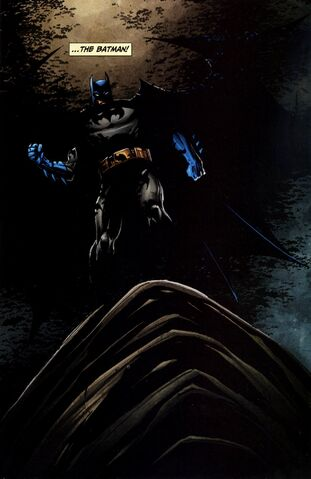 File:Batman 0357.jpg