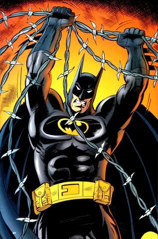 File:Batman 0555.jpg