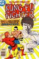 Richard Dragon Kung-Fu Fighter Vol 1 14