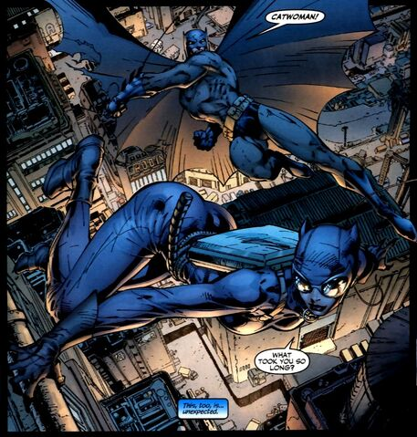 File:Catwoman 0014.jpg