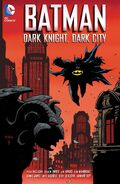 Batman Dark Knight Dark City TP