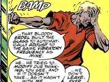 Barry Allen (Holy Terror)