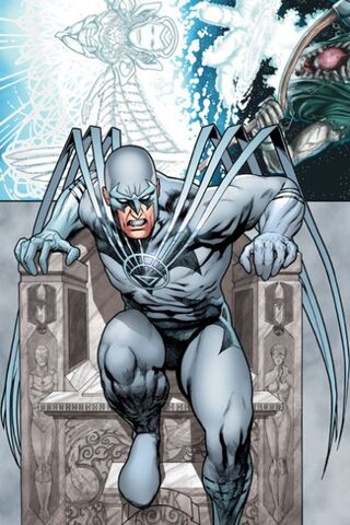 File:White lantern Hawk.jpg
