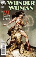 Wonder Woman Vol 2 222