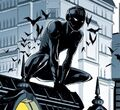 Bruce Wayne Nightwalker 0001