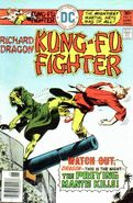 Richard Dragon Kung-Fu Fighter Vol 1 9