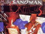 Sandman Special Vol 1 1