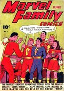 Marvel Family 2