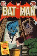 Batman 250
