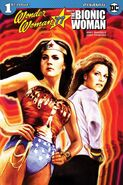 Wonder Woman '77 Meets the Bionic Woman Vol 1 1