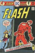 The Flash Vol 1 240