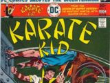 Karate Kid Vol 1 3