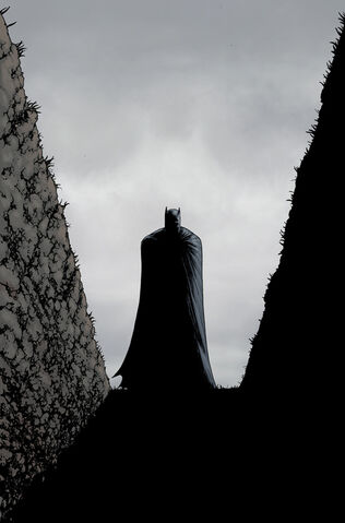 File:Batman Incorporated Vol 2 9 Textless.jpg