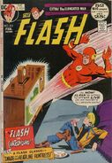 The Flash Vol 1 212