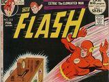 The Flash Vol 1 212
