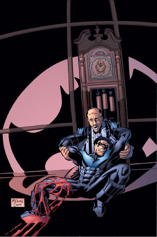 File:Nightwing 0032.jpg