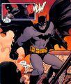 Batman 0511
