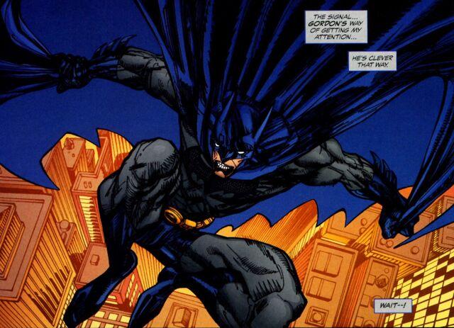 File:Batman 0507.jpg