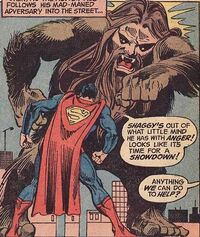 Superman vs. the Shaggy Man