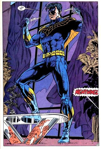File:Nightwing 0028.jpg