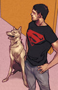 Krypto Earth 16 001