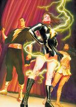 Justice Society of America v.3 25 (Virgin)