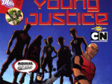 Young Justice Vol 2 13