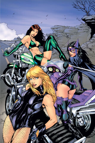 File:Birds of Prey 0007.jpg