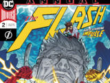 The Flash Annual Vol 5 2
