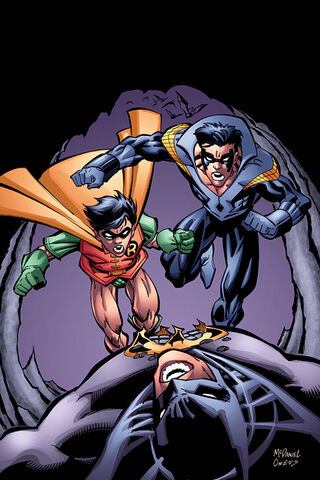 File:Nightwing 0035.jpg