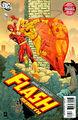 Flash Rebirth Vol 1 005