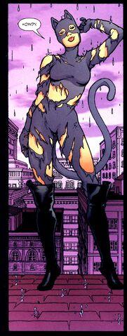 File:Catwoman 0022.jpg