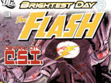 The Flash Vol 3 3