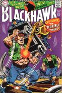 Blackhawk Vol 1 234