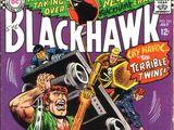 Blackhawk Vol 1 234