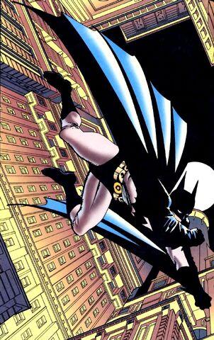 File:Batman 0208.jpg