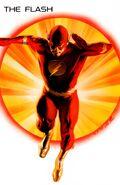 Flash Justice 001