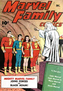 Marvel Family 1