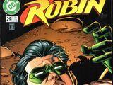 Robin Vol 4 29