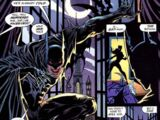Bruce Wayne (Earth-1099)