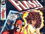 The Flash Vol 2 39