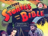 Picture Stories from the Bible New Testament Vol 1 1